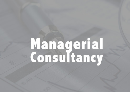 Managerial Consultancy